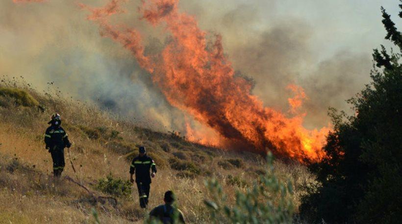 Σε εξέλιξη πυρκαγιές σε Φάρσαλα και Ελασσόνα