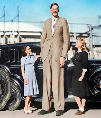 Por qué somos más o menos altos