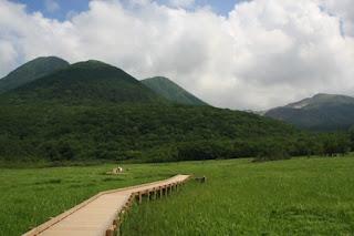 พื้นที่ชุ่มน้ำ ทาเดวะระ Tadewara Wetland
