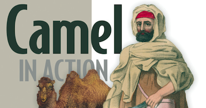 Claus Ibsen (@davsclaus) riding the Apache Camel: Camel in Action 2 - One year later since we started