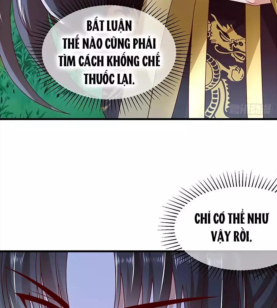 Quyền Phi Chi Đế Y Phong Hoa Chapter 5 - Trang 13