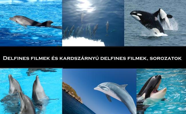 Delfines filmek és kardszárnyú delfines filmek, sorozatok