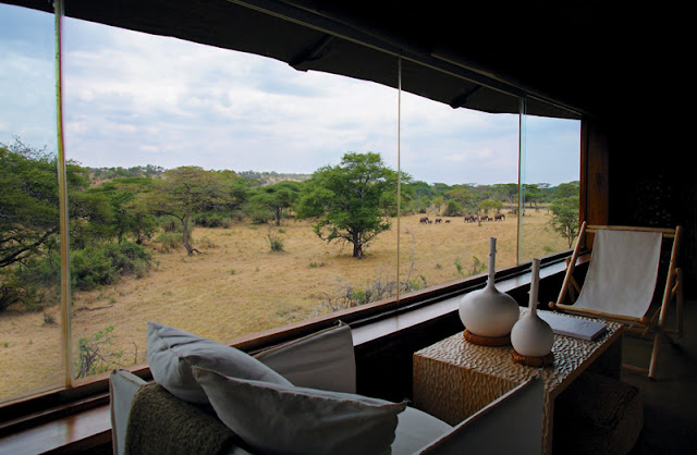 The Ultimate Luxury Safari│Tanzania 13