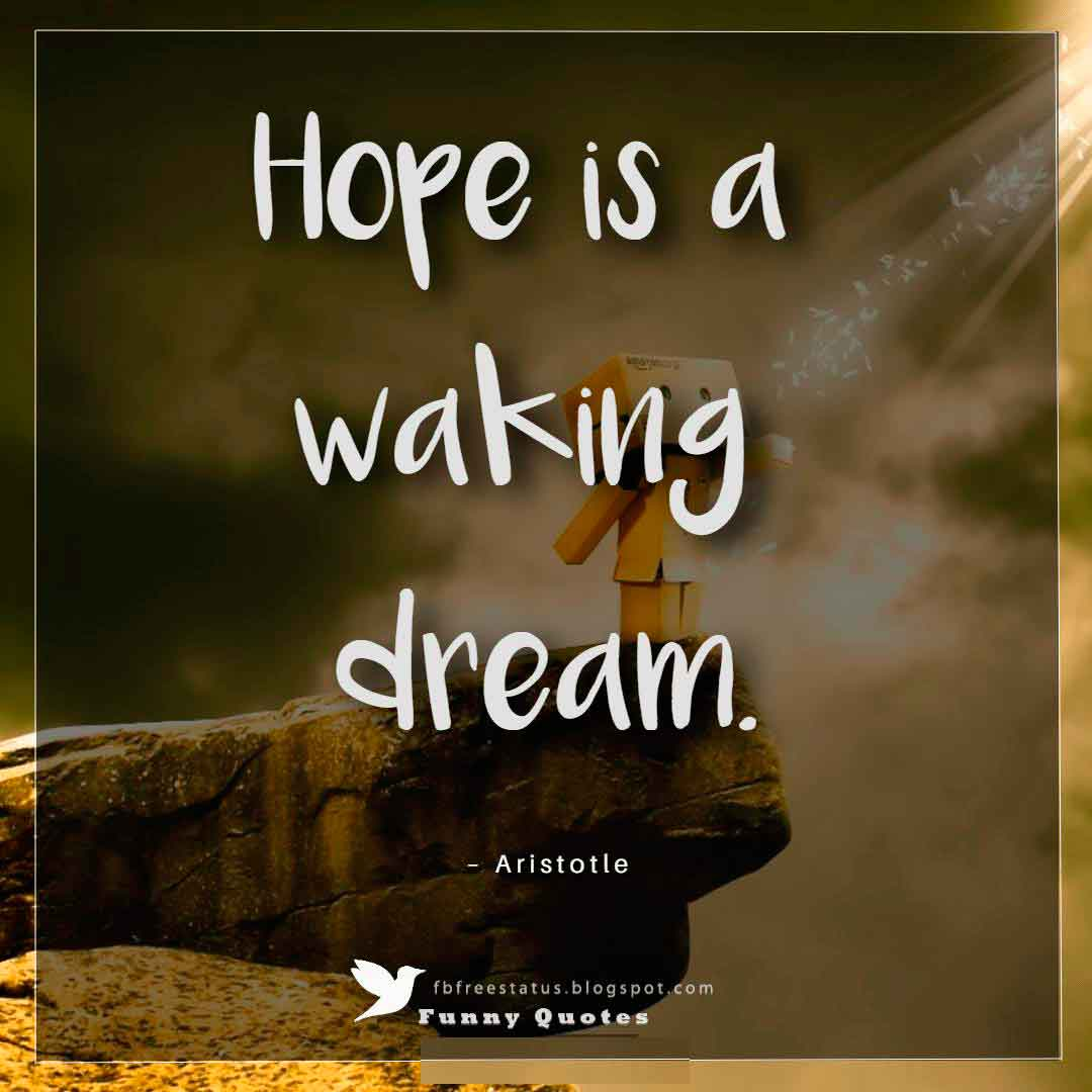 """Hope is a waking dream."" ~Aristotle"