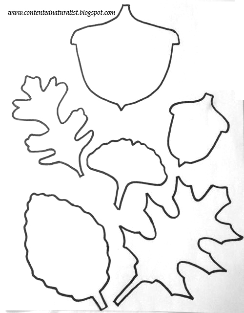 The Contented Naturalist: Leaf Template Craft-- with free ...