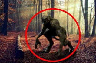 Τα τρομακτικά πλάσματα του Καναδά (Βιντεο)