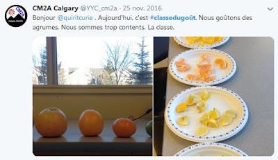 #Classedugout agrumes 1
