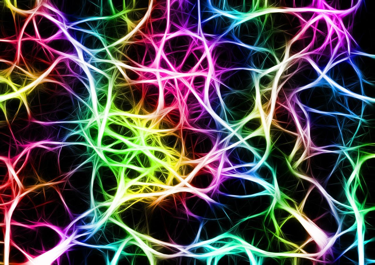 Kerzenblatevents De Hersenen Zijn Kneedbaar