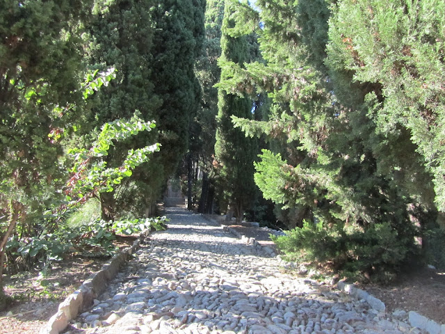 Viale del Cipressi