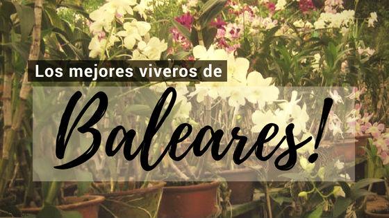 Listado de los Mejores Viveros de la Provincia de Baleares, España, donde puedes comprar plantas para tus proyectos