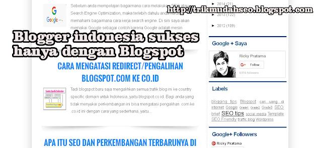 Blogger indonesia sukses hanya dengan Blogspot