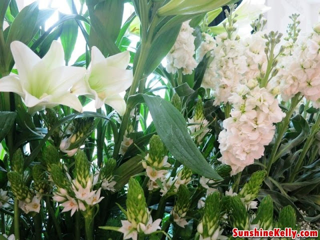 5 Intelligent White Flowers, sea lily, narcissus, bellis, white lupin, wintergreen