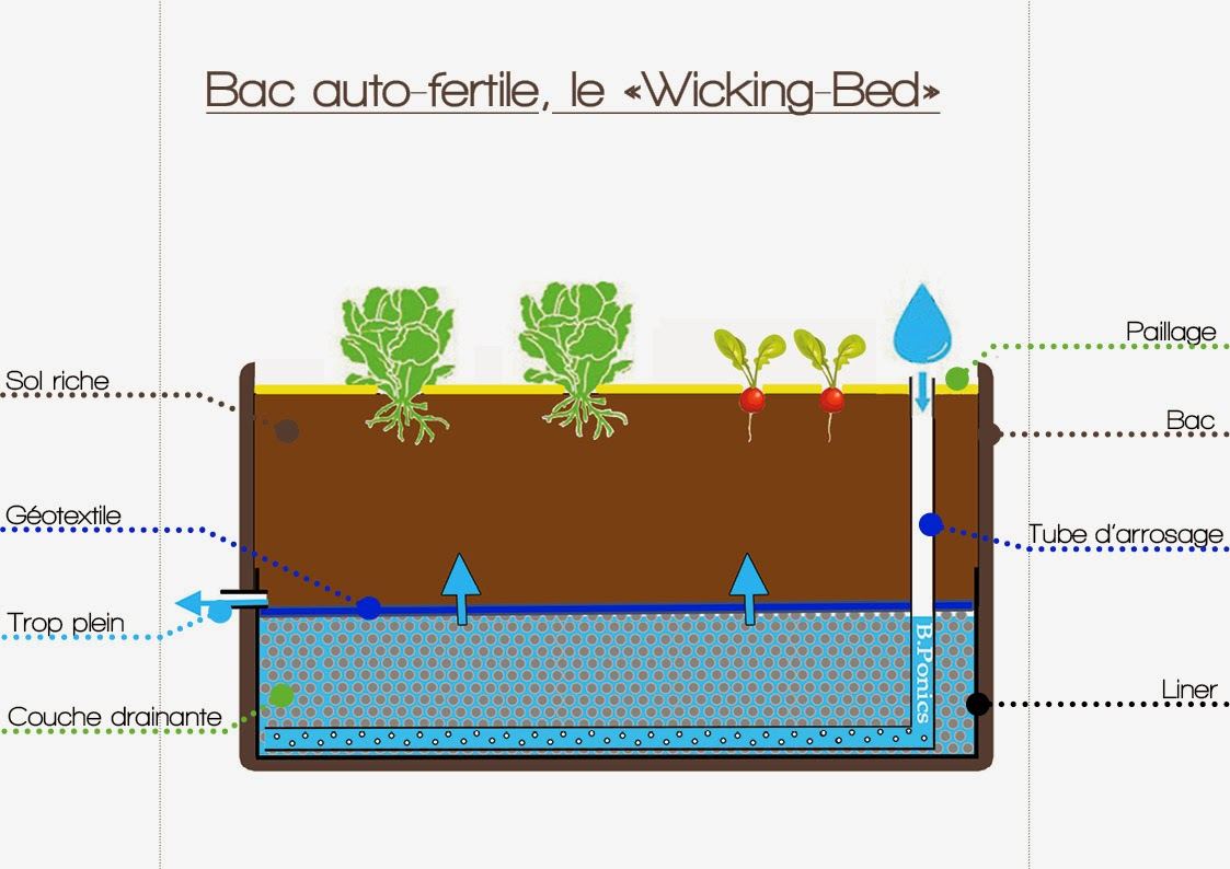 permaculture en bac xf47 montrealeast. Black Bedroom Furniture Sets. Home Design Ideas