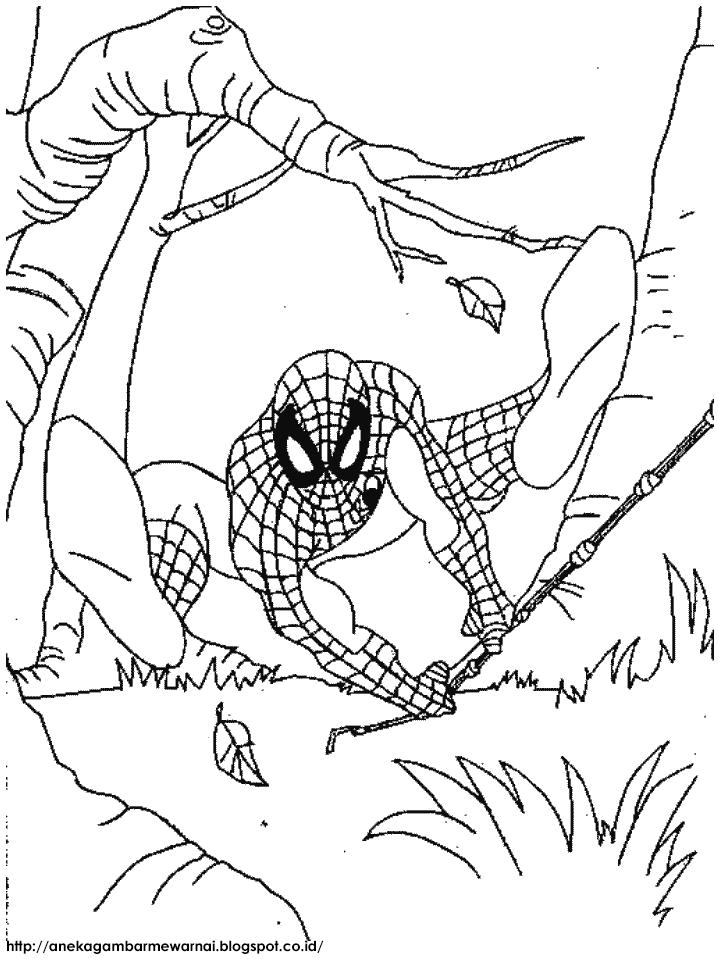 Gambar Mewarnai Spider Man Untuk Anak PAUD dan TK 2