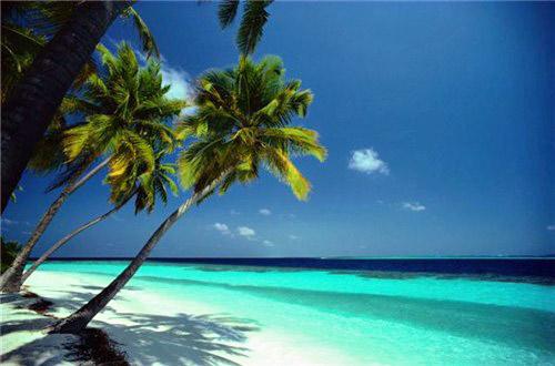 Tropical Island Getaways: World Visits: Top 8 Tropical Beach Collction