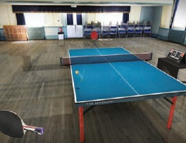 45 best Android games Table Tennis Touch