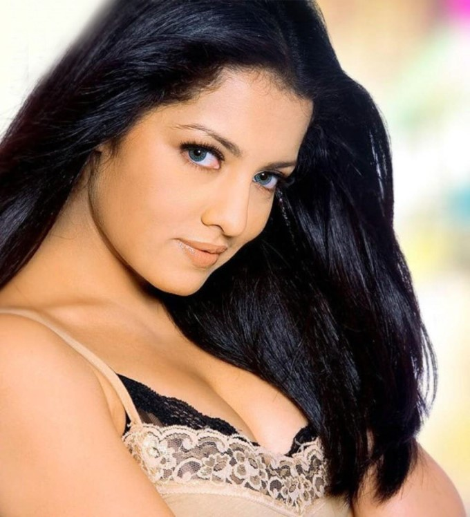 Celina Jetily New Bollywood Actress Pics 2016 Dirty Picture Hot Painting