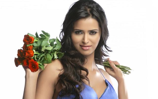 Meenakshi Dixit HD Wallpapers Free Download