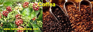 Coffee for Beauty Skin Care