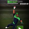 Play Online Cricket Fielder Challenge Game
