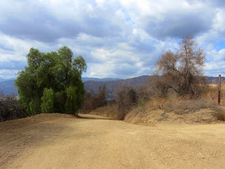 View west from the junction of South Hills Trail and Alosta Canyon Trail