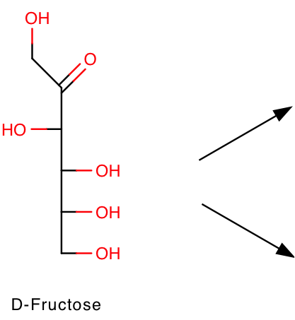 Fischer projection of d fructose
