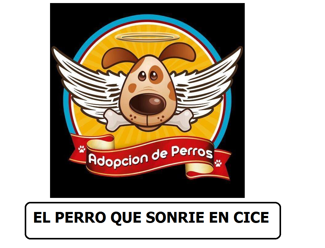 adopcion de perros -el perro que sonrie en cice