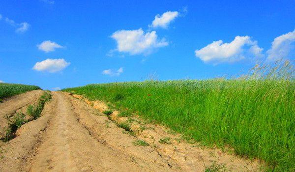 The way near the field