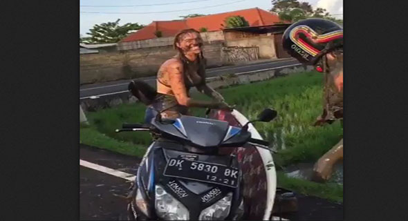 Video Bule Nyebur Sawah
