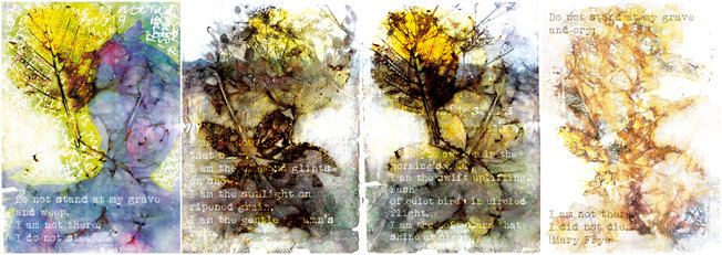 Carmen Wing - Book pages - Eco Print and Photoshop - Mary Frye Poem