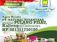 Alamat Agen Distributor Nasa Pulang Pisau, Kalimantan Tengah