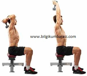 Oturarak Triceps Extension Yapmak