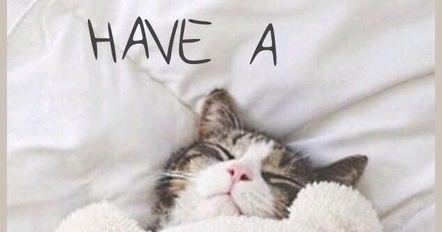 Got A Sunday?yawn & Protect It