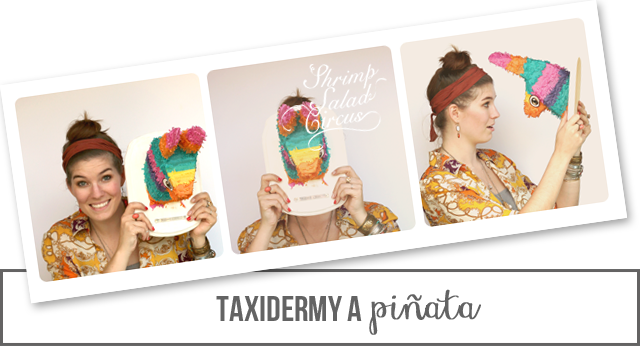 Piñata Taxidermy
