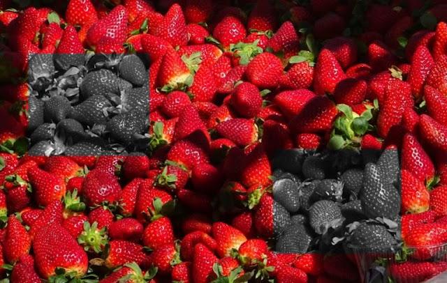 Αδίστακτοι! Φράουλες… φονιάδες! Έβαζαν βελόνες ραψίματος μέσα σε φράουλες που πωλούνται σε σούπερ-μάρκετ