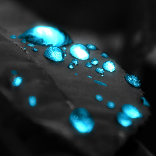 Water Droplets Wallpaper Engine