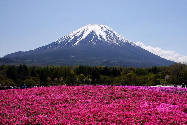 Tempat-tempat Liburan Terbaik di Jepang yang Harus Kamu Tahu
