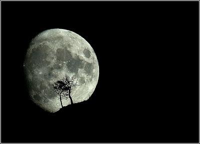luna_poema