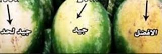 طريقة معرفة البطيخ ناضج ام غير ناضج
