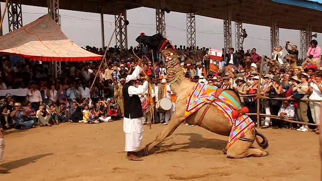 Pushkar Fair, Pushkar
