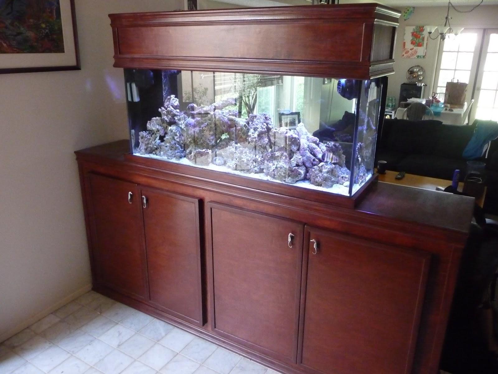 Arduino Aquarium: Introduction