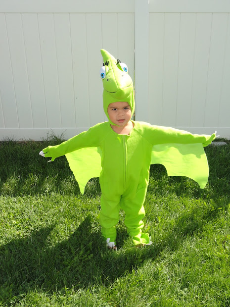 Dino Train 'tiny' Costume With Dinosaur Book Giveaway