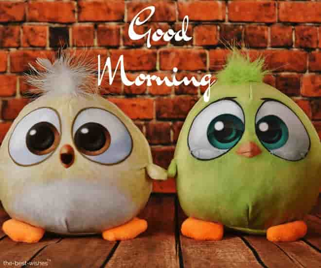 good morning with angry birds