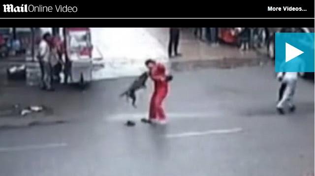 Βίντεο: Σκυλί σε αμόκ τραυματίζει 20 ανθρώπους στην Κίνα