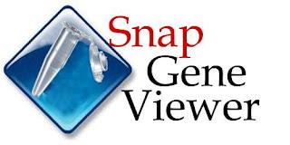 ¡Estudia el ADN fácilmente! gracias a SnapGene Viewer