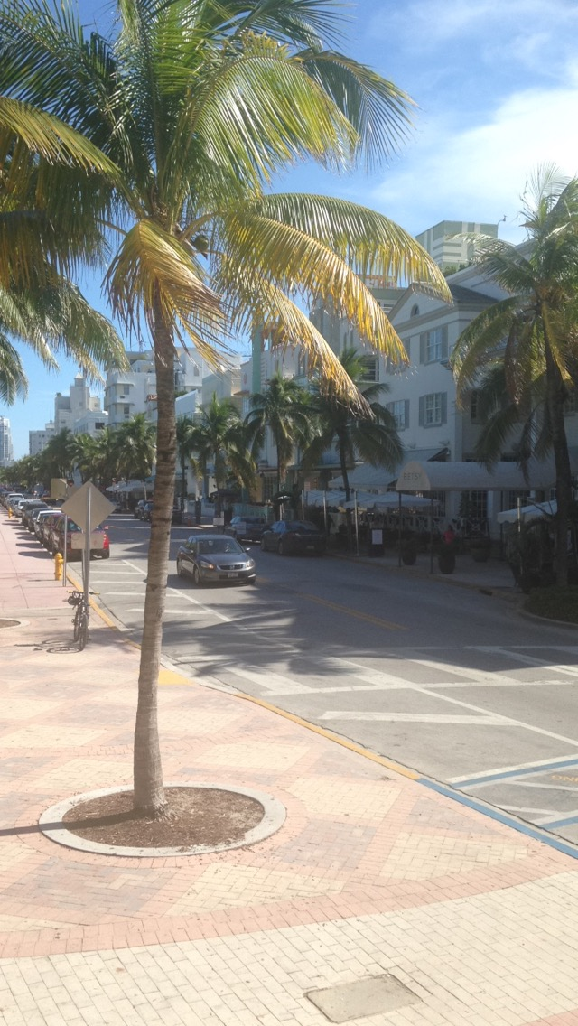Highlights of Miami Beach