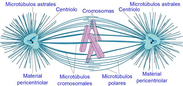 Ciencias relacionadas con la quimica yahoo dating 5