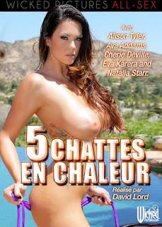 5 Chattes En Chaleur