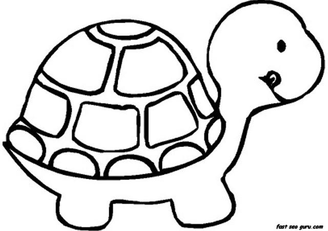 Раскрась маленького черепашёнка Маленькая черепаха раскраска Little Turtle Coloring