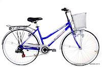 City Bike United Pattaya C1.01 7 Speed Shimano 26 Inci